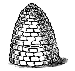 Vintage Vector Drawing or Engraving of Antique Old Style Bee Hive or Beehive Made From Straw