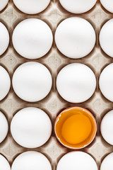 Eggs packed in cardboard or boxes for transporting