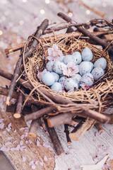 eier im natürlichen Nest mit Kirschblüten auf holztisch