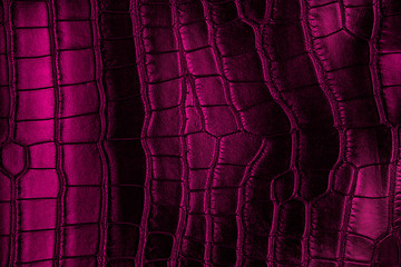 Wall Mural - Violet crocodile leather texture
