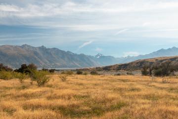 Hakatere Conservation Park, New Zealand