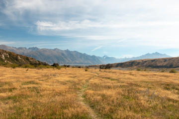 Walking trail in Hakatere Conservation Park, Canterbury, New Zealand