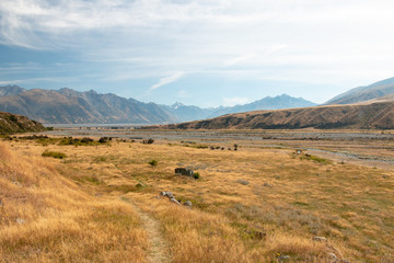 Walking trail in Hakatere Conservation Park, South Island of New Zealand