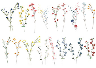 Big set botanic blossom floral elements. Branches, leaves, herbs, wild plants, flowers. Garden, meadow, feild collection leaf, foliage, branches. Bloom vector illustration isolated on white background Wall mural