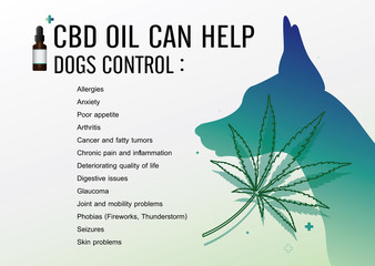 cbd oil can help dogs control and vector infographic on white background.