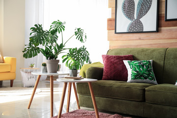 Wall Mural - Soft couch with green plants in interior of living room