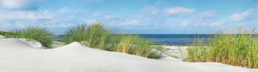 Baltic Sea Beach - Panorama