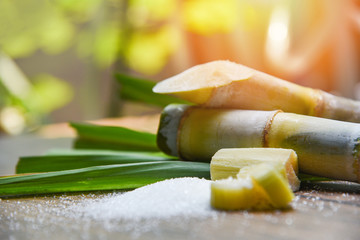 White sugar and sugar cane on wooden  table and nature background