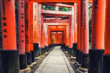 Fushimi Inari Taisha Shrine torii gates in Kyoto, Japan. Wall mural