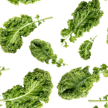 Seamless pattern with green kale leaf isolated on white. Vegetable background. Food texture. Close-up photo.
