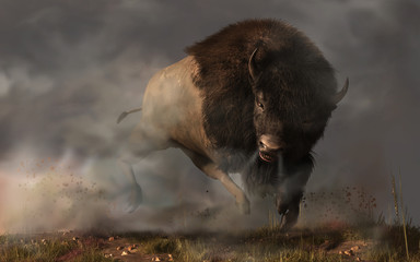 On a dark and foggy prairie in the American west, an enraged bison bull kicks up dust as it charges. Better get out of the way of this angry buffalo.  3D Rendering Wall mural