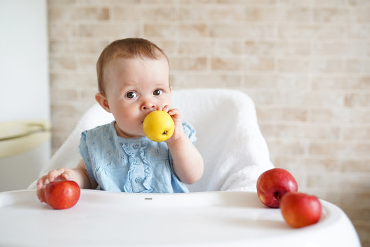 Baby eating fruit. Little girl biting yellow apple sitting in white high chair in sunny kitchen. Healthy nutrition for kids. Solid food for infant. Snack or breakfast for young child