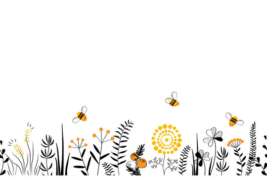 Vector nature seamless background with hand drawn wild herbs, flowers and leaves on white. Doodle style floral illustration.