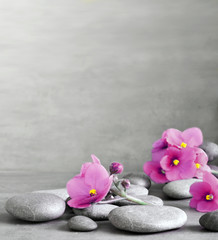 Purple flower and stone zen spa on grey background