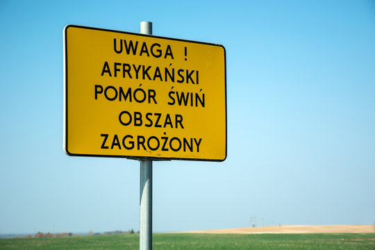 Yellow warning sign - attention, african swine fever