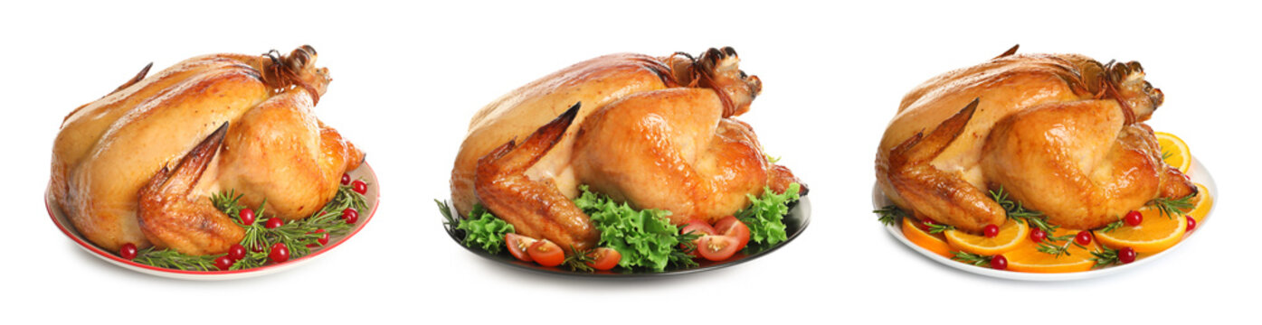 Set of delicious roasted turkey on plates against white background