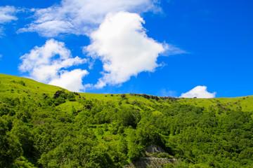 Poster de jardin Vert 車山