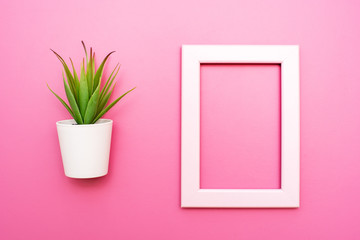Empty frame and aloe on pink background