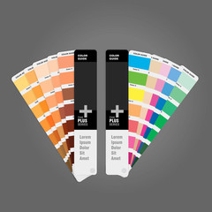 Illustration of two color palettes guide for print guide book for designer photographer and artists