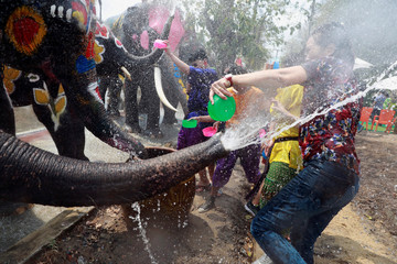 Elephants and people play with water as part of celebrations for the water festival of Songkran, which marks the start of the Thai New Year in Ayutthaya
