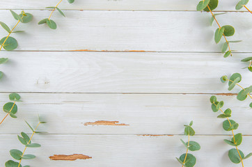 Foto auf Leinwand Blumen Top view floral eucalyptus flat lay frame on white rustic wood