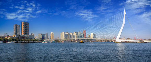 Photo Blinds Rotterdam Erasmus bridge in Rotterdam in a beautiful summer day, The Netherlands