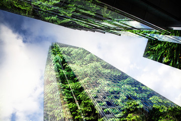 green city - double exposure of lush green forest and modern skyscrapers windows Wall mural