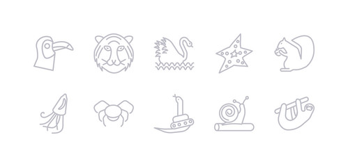 simple gray 10 vector icons set such as sloth, snail, snake, spider, squid, squirrel, starfish. editable vector icon pack
