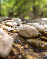 Stones in the mountain river in the spring