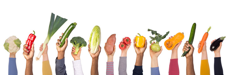 Fresh vegetables in hands isolated on white background