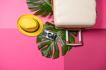 Suitcase, tropical leaves, photo camera and hat on color background. Travel concept