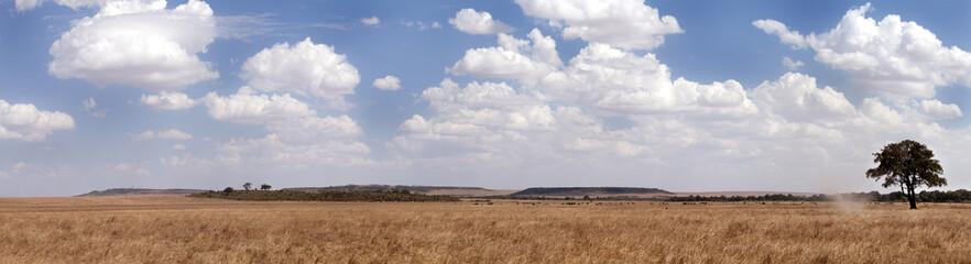 A panoramic view of Masai Mara grassland, Kenya Wall mural