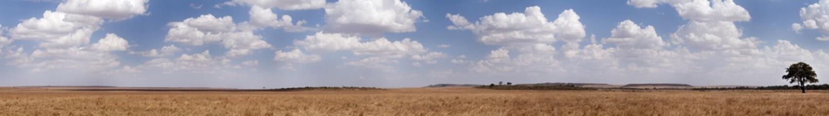 Wall Mural - A panoramic view of Masai Mara grassland, Kenya
