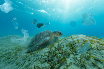 Underwater global problem with plastic rubbish