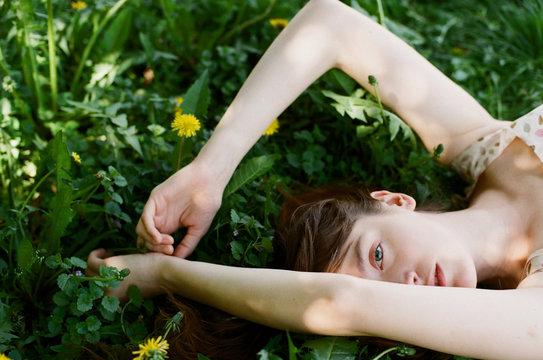 Young woman lying among dandelions