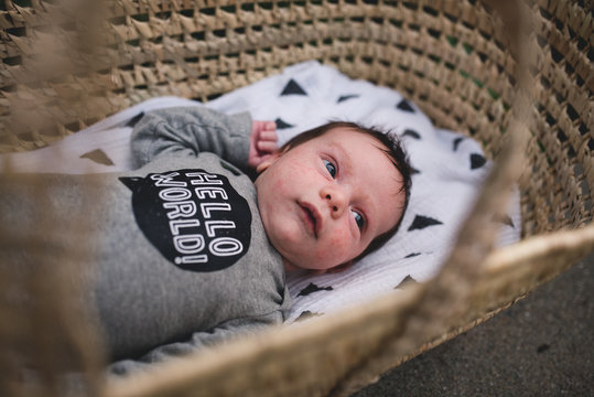Baby lies in moses basket.