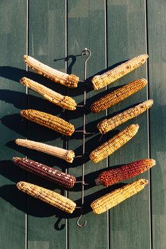 Corn Cob Decoration on Door
