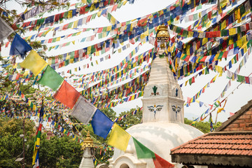 Prayer Flags at Buddhist Temple in Nepal