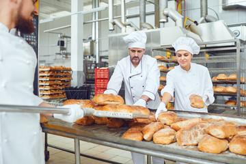 Deurstickers Bakkerij Bakers put fresh bread on trays in the bakery