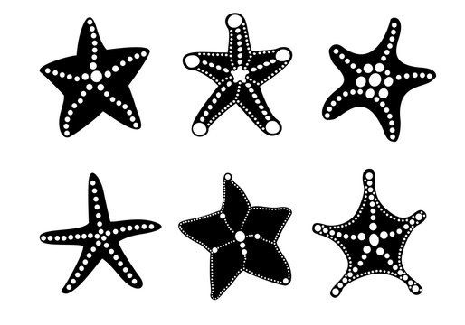 Starfish silhouette icon set for your ocean design. Black marine objects isolated on white background. Vector sea nature illustration