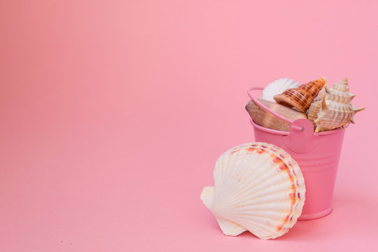 A bucket with seashells on a pink background. The buckets are completely filled with seashells. There is a place for text.