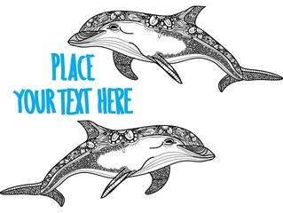 The bottlenose dolphin. Meditative coloring. Mandala, dudling drawing. Drawing by hand. Coloring for children. Points, stripes, arrows.