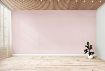 Rubber fig in a pink room