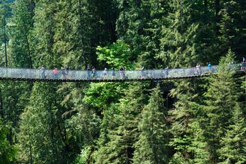 Spoed Foto op Canvas Olijf Capilano Suspension Bridge, North Vancouver, Canada