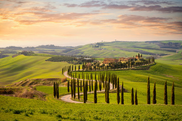Foto auf Acrylglas Beige Tuscan hill with row of cypress trees and farmhouses at sunset. Tuscan landscape. Italy