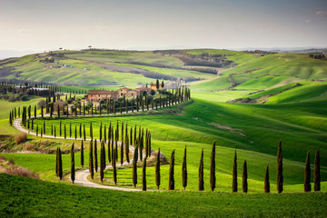 Tuscan hill with row of cypress trees and farmhouse at sunset. Tuscan landscape. Italy Fotomurales