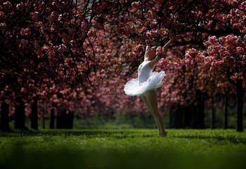 A dancer poses for her own photographer in front of pink cherry tree blossoms during a sunny spring morning at the Parc de Sceaux gardens near Paris