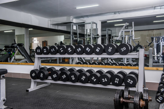 Gym interior with equipment of dumbbells in rows