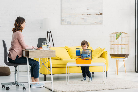 attractive mother using laptop and cute son standing near pet cage