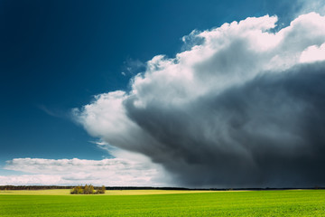 Storm And Rain Above Countryside Rural Field Or Meadow Landscape With Green Grass Under Scenic Spring Blue Dramatic Sky With White Fluffy Clouds. Rain Clouds On A Sunny Day.